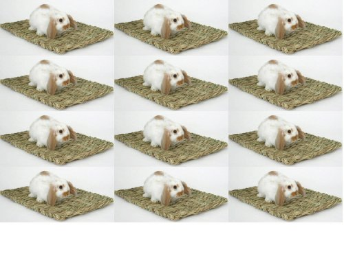 Marshall Pet Peters Grass - 3