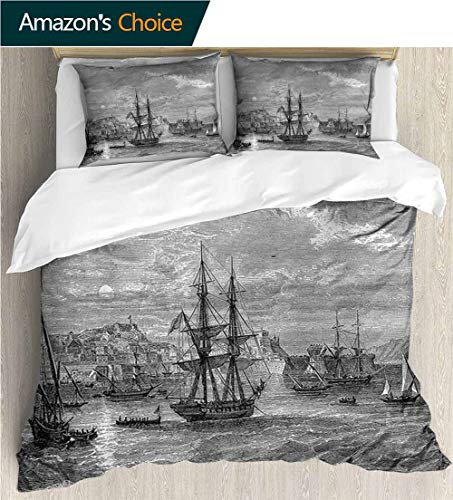 King Duvet Cover Set,Box Stitched,Soft,Breathable,Hypoallergenic,Fade Resistant Bedding Set Cover With 2 Pillow Shams Decorative Quilt Cover Set -Antique History Of France Elba (87