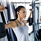 Avantree NB16 Bluetooth Neckband Headphones Earbuds for TV PC, No Delay, 20 Hrs Playtime Wireless Earphones with Mic, Magnetic, Light & Comfortable, Compatible with iPhone Cell Phones, Workout Gym