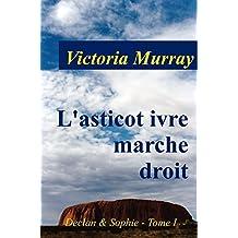 L'asticot ivre marche droit: une si longue absence (Declan & Sophie t. 1) (French Edition)