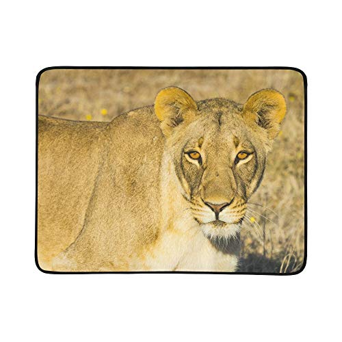(ZXWXNLA Wildlife in Nxai Pan National Park Pattern Portable and Foldable Blanket Mat 60x78 Inch Handy Mat for Camping Picnic Beach Indoor Outdoor Travel)