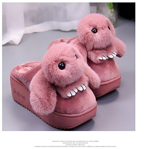 Fankou Coton Pantoufles Femmes Anti-dérapant Chaud Épais Maison Hiver Belles Chaussures Chaussures De Bande Dessinée, 35-36, Rose Clair