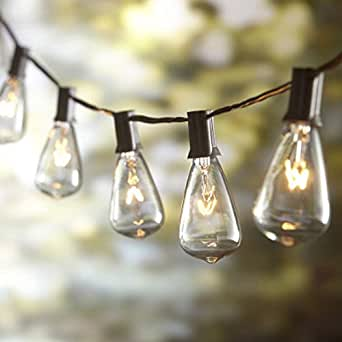 10ft outdoor patio string lights with 10 clear st38 bulbs