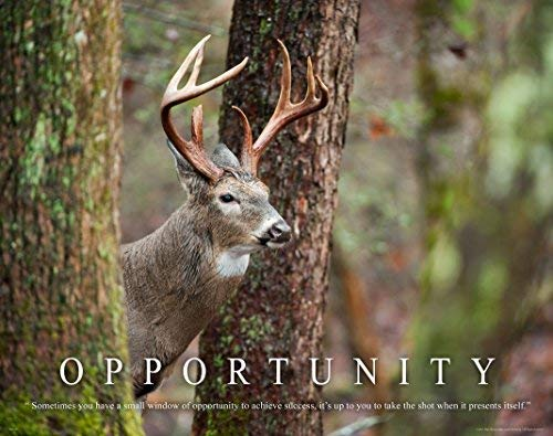 Whitetail Deer Motivational Poster Art Print 11x14 Bow Hunting Buck Commander Wall Decor Pictures