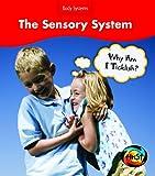 The Sensory System, Sue Barraclough, 1432908715
