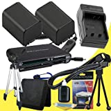 TWO NP-FV100 Lithium Ion Replacement Batteries w/Charger + Mini HDMI + Tripod + Memory Card Reader/Wallet + Deluxe Starter Kit for Sony NEXVG10, NEXVG20 Interchangeable Lens HD Handycam Camcorder DavisMAX Accessory Bundle
