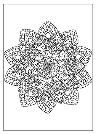 Amazon.com : Adult Coloring Greeting Cards (Set of 6, 3 Designs ...