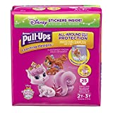 Health & Personal Care : Pull-Ups Learning Designs Training Pants for Girls, 2T-3T