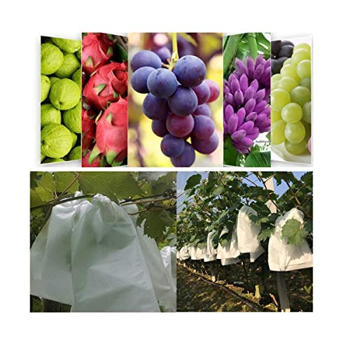 Grape Fruit Protectors Insects Mosquito Bug Net Barrier Bags Garden Fruit Plants Protect Bags 100 PCS 10