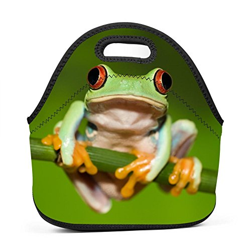 TuNan Frog Tree Green Polypedatid Zip Lunch Bags Picnic Box Portable Bento Bag KD-S for School ()
