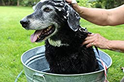 Dog Shampoo, Awesome for Cats too – Easy to Use Organic Oils and Extracts Relieves Dry Itchy Skin, Produces Clean, Soft and Shiny Pets, Great for Kittens & Puppies