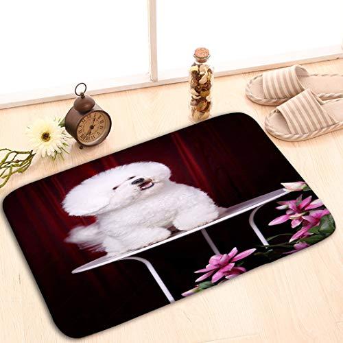 (zexuandiy Non-Slip Doormat Non-Woven Fabric Floor Mat Indoor Entrance Rug Decor Mat 23.6