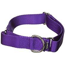 PetSafe Martingale Collar 1-Inch Medium, Deep Purple