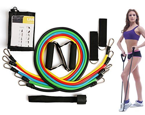 Resistance Bands Set, 5 Exercise Bands for Resistance Traini
