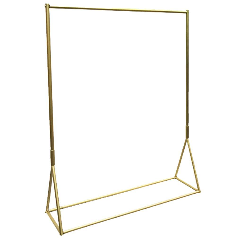 Unbekannt Nano-Gold-BekleidungsgeschäFt-Ausstellungsstand, Nicht Fallende Farbe Malen BodenaufhäNger-Gestell, Multi-GrößEnauswahl