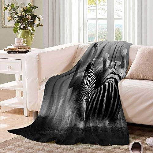 (AfricaOffice Throwing blanketZebra Rolling in The Dust Artistic Savage Animal Mammal Activity Eco PhotoOffice Warm Blanket 90