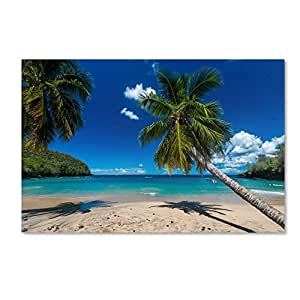 Martinique Artwork by Mathieu Rivrin, 12 by 19-Inch Canvas Wall Art