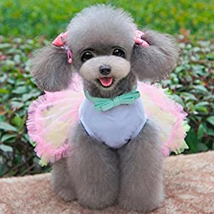 Ollypet Cute Dog Birthday Dress for Girls Dogs Clothes Cupcake Tutu Apparel Small Cats Puppy Yorkie L