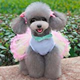 Ollypet Pack of 2 Cute Clothes for Small Dogs