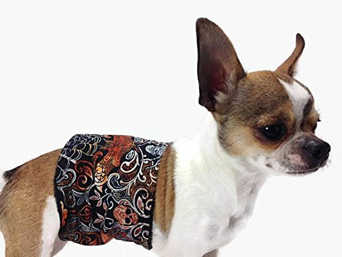 Group One Dog Gallery The Dog Belly Band Bats Spiders Skulls Washable Waterproof (LG Size 24-30) ()