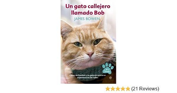 Un gato callejero llamado Bob: James Bowden: 9788490607305: Amazon.com: Books