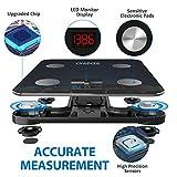 RENPHO Smart Bathroom Scale, Bluetooth Body Fat