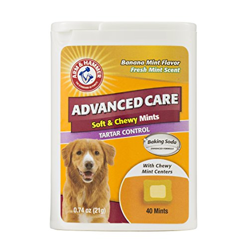 Arm & Hammer Advanced Care Soft & Chewy Mints