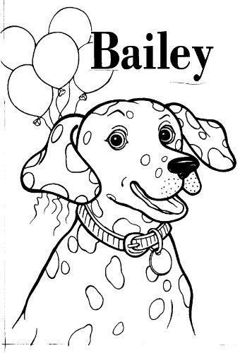 New York City-Bailey's Birthday (Birthdays Children's ...