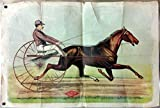 Calhoun Paint Company harness racing trotter & sulky paper poster ca 1870s