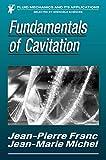 Download Fundamentals of Cavitation (Fluid Mechanics and Its Applications) in PDF ePUB Free Online