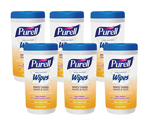 Sani Hands Wet Wipes (Purell 9122-06-CMR Hand Sanitizing Wipes, Fresh Citrus Scent, 40 Count Canister (Pack of 6) (Packaging may vary))
