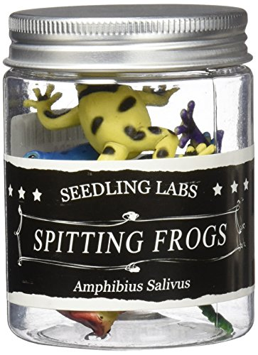 Top Amazing Spitting Frogs supplier
