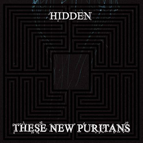 Hidden [Vinyl] - Puritan Japan