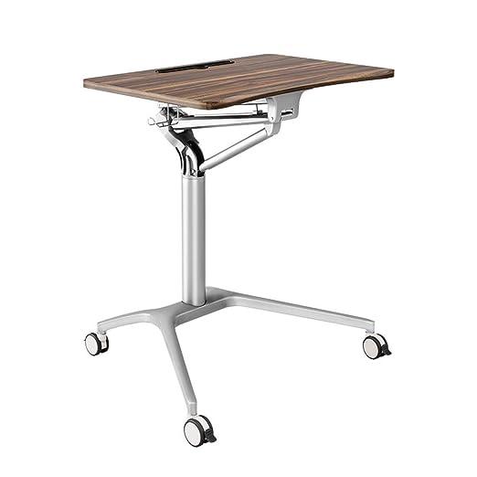aoeiuv Escritorio ExtraíBle para Laptop Stand-Up Escritorio ...