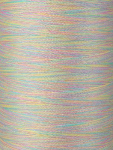YLI 2443010V 3-Ply Machine Cotton Quilting Variegated Thread, 3000 yd, Pastel - Machine Salmon