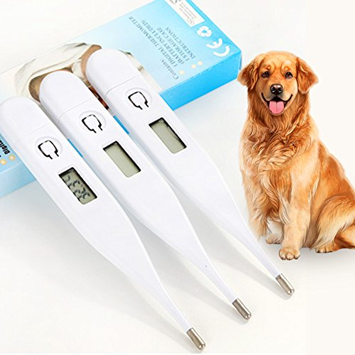 Wildlead Probador de Temperatura Veterinaria Termómetro Digital para Mascotas Perro Cachorro Gatos Conejos Gatitos: Amazon.es: Hogar