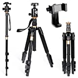 Rovtop Camera Tripod Canon Tripod - with 360°Panorama Ball Head Tripod Ideal for Camera Travel and Work with Carry Bag