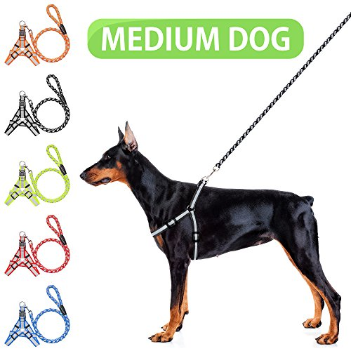 K9KONNECTION Reflective No-Pull & No-Choke Dog Walking Harness with FREE Rope Leash For Small, Medium & Large Size Dogs- Heavy Duty for Training & Night Running - Adjustable & Lightweight For Your Pet (Dog Harness No Pull Medium)