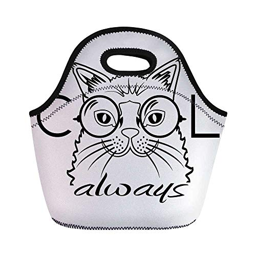 Cat Durable Lunch Bag,Cool Smart Fashion Kitty Image in Big Glasses Hipster Trendy Pet Kids Satire Sketch for School Office,11.0