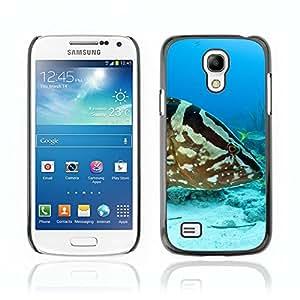 Carcasa Funda Case //Grouper Fish V0000275// Samsung Galaxy S4 MINI i9190 i9192 i9195