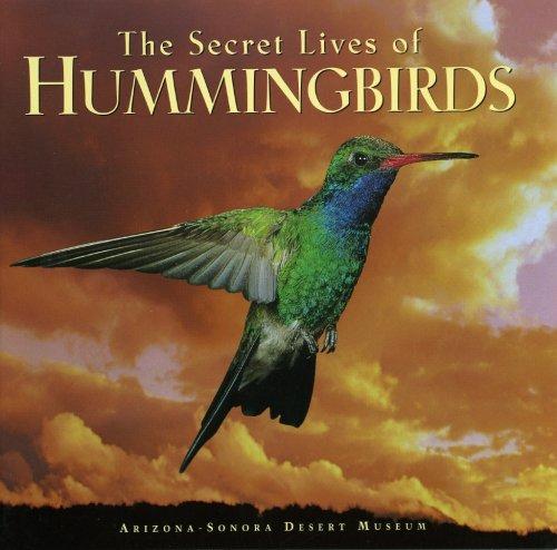 The Secret Lives of Hummingbirds