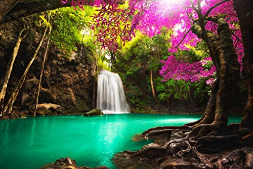 Beautiful Waterfall in Tropical Forest Photo Art Print Poster 36x24 inch