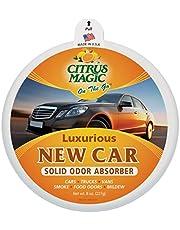 Citrus Magic On The Go Crisp Pine Solid Air Freshener