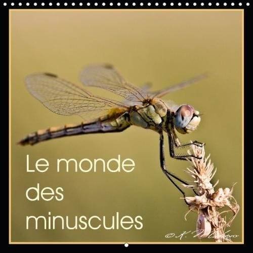 Le Monde Des Minuscules 2018: Mise En Beaute Des Arthropodes (Calvendo Animaux) (French Edition) by Calvendo Verlag GmbH