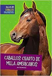 Caballos Cuarto de Milla Americanos (Razas de caballos favoritos)