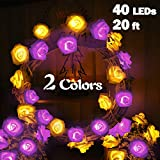 20ft 40 LEDs Rose Lights,Rose Fairy String Light Battery Operated Multicolor Flower Lamp Seasonal Lights Outdoor Bedroom Walls Window Wedding Garden Christmas Halloween Party Decor Purple Warm White