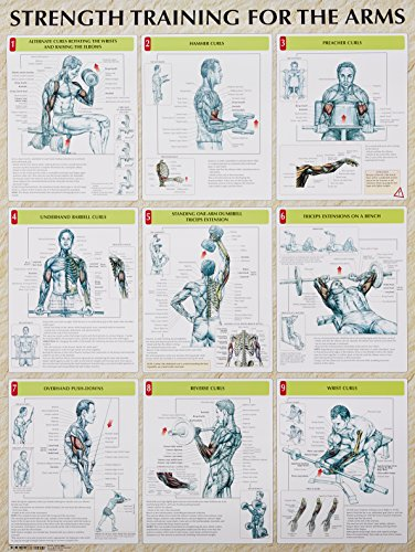 Strength Training for the Legs Poster (Strength Training Anatomy)