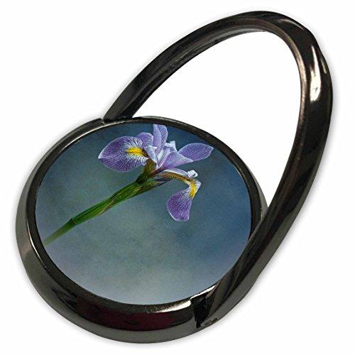 Mist Iris (3dRose Chris Lord Botanica - Iris Mist Blue Floral Flower - Phone Ring (phr_55962_1))