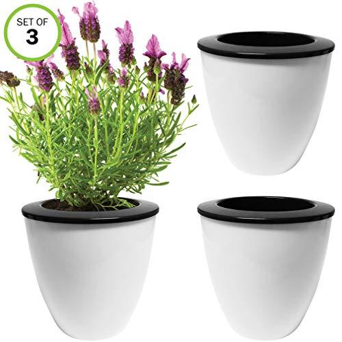 Evelots Self Watering Planter-Indoor-Outdoor-Flowers-Herb-Seeds-10 Days-SM-Set/3