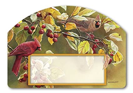 Amazoncom Magnet Works Mail75972 Cardinal Afternoon Yard Design